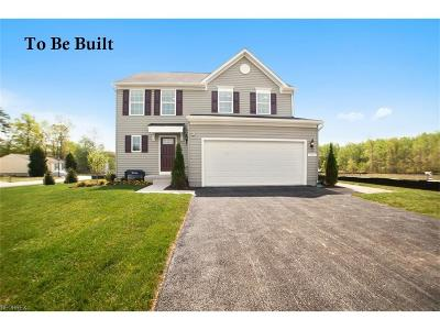 Painesville Township Single Family Home For Sale: 1961 South Ashwood Ln