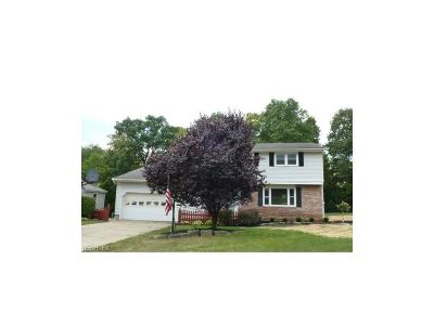 Boardman Single Family Home For Sale: 6582 Applewood Blvd