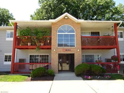 Olmsted Township Condo/Townhouse For Sale: 27097 Oakwood Cir #101