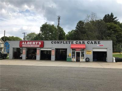 Commercial For Sale: 5810 Main Ave