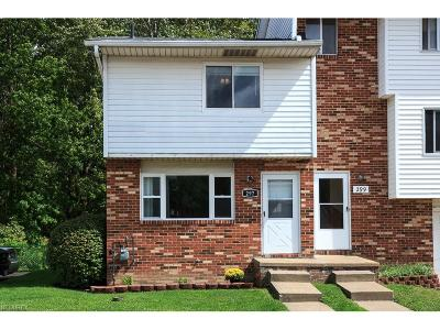 Painesville Condo/Townhouse For Sale: 297 University Ave