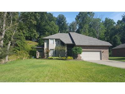 Walton Hills Single Family Home For Sale: 17663 Rauland Dr