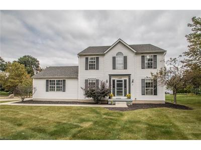 Twinsburg Single Family Home For Sale: 1247 Waldo Way