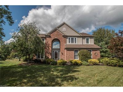 The Woods Single Family Home For Sale: 17846 Lyon Ln
