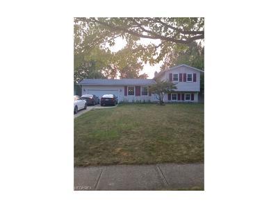 Brunswick Single Family Home For Sale: 474 Bruce Dr