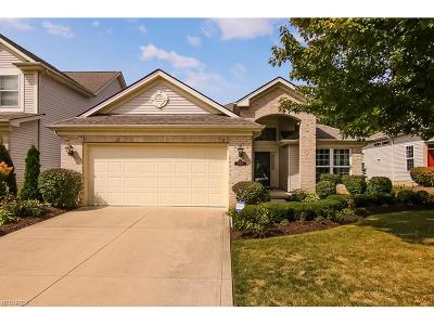Westwood Farms Single Family Home For Sale: 21458 Woodview Cir