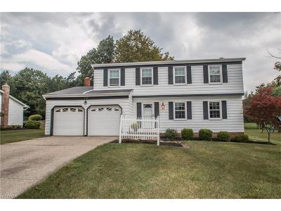 Broadview Heights Single Family Home For Sale: 2410 Boxberry Ln