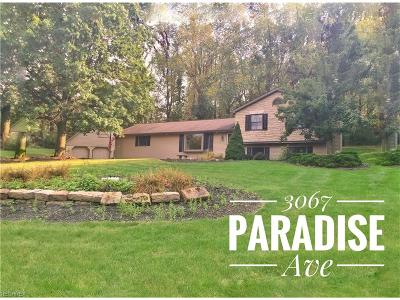 Canfield Single Family Home For Sale: 3067 Paradise Ave