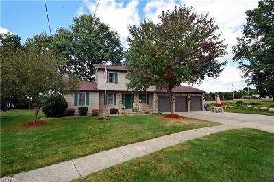 Newton Falls Single Family Home For Sale: 223 Ashlynn Ct