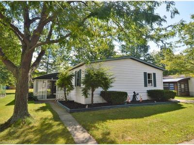 Olmsted Township Single Family Home For Sale: 4 Dogwood Ln