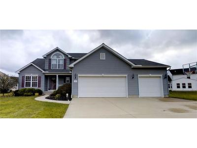 Avon Single Family Home For Sale: 1701 Pine Dr