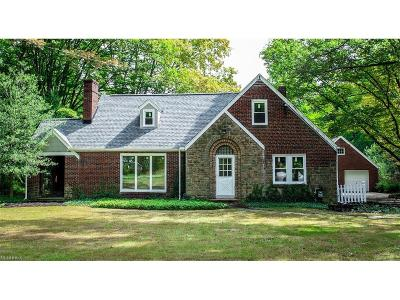 Canfield Single Family Home For Sale: 4839 South Raccoon Rd
