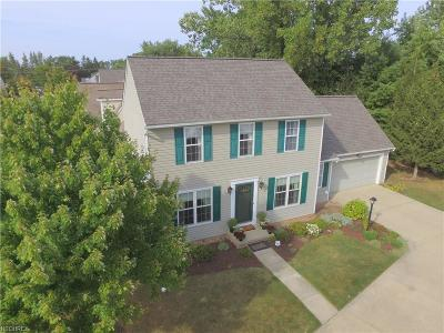 Brunswick Single Family Home For Sale: 1139 Glencove