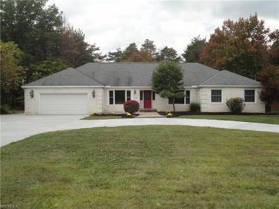 Strongsville Single Family Home For Sale: 19646 Prospect Rd