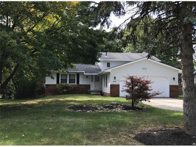 Strongsville Single Family Home For Sale: 16113 Lanier
