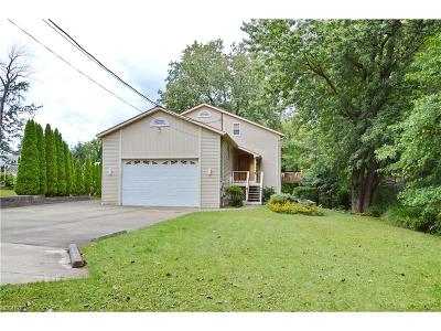 Painesville Township Single Family Home For Sale: 150 Parkhall Dr