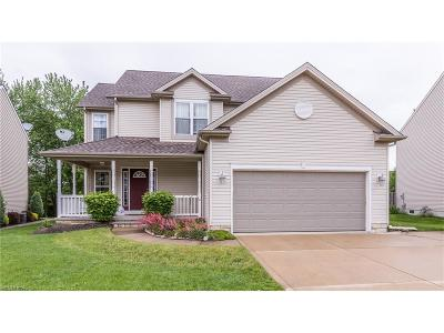 Painesville Township Single Family Home For Sale: 1055 Outrigger Cv