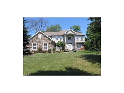 Broadview Heights Single Family Home For Sale: 7926 Windridge Dr