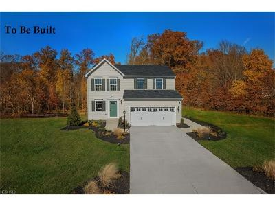 Painesville Township Single Family Home For Sale: 1168 Vista Lago Cir