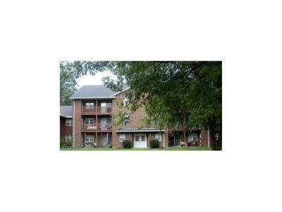 Broadview Heights Condo/Townhouse For Sale: 1150 Tollis #321