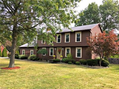 Canfield Single Family Home For Sale: 431 Chatsworth Ln