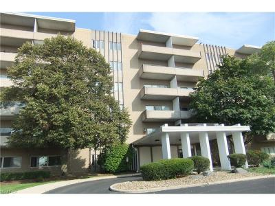 Condo/Townhouse Sold: 3167 Linden Rd #602