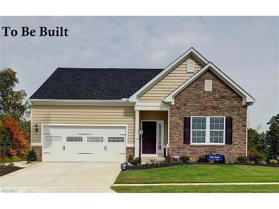 Avon Single Family Home For Sale: 38810 Coronado Dr
