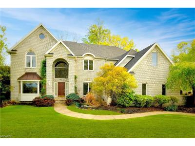 Broadview Heights Single Family Home For Sale: 1242 Emerald Creek Dr