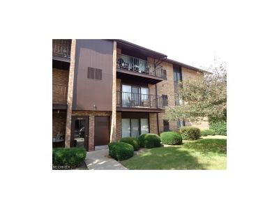 Middleburg Heights Condo/Townhouse For Sale: 16445 Heather Ln #F104