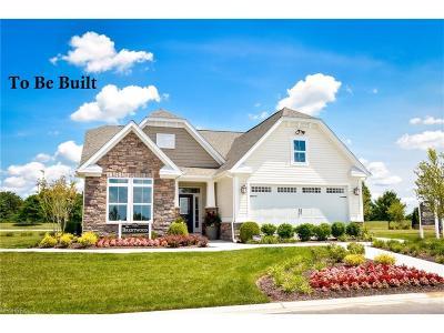 Avon Single Family Home For Sale: 2390 Deerfield Dr