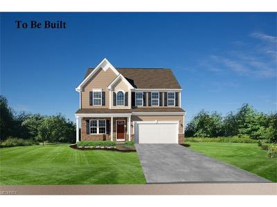 Painesville Township Single Family Home For Sale: 1985 South Ashwood Ln