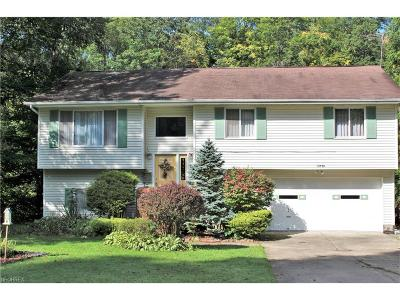 Newbury Single Family Home For Sale: 15798 Grace St