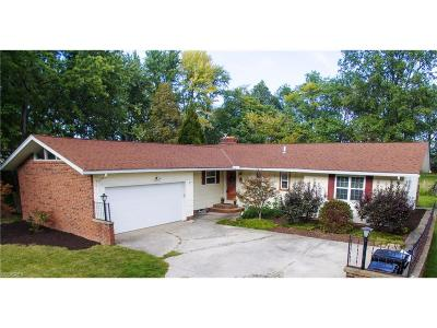 Elyria Single Family Home For Sale: 941 Elywood Dr