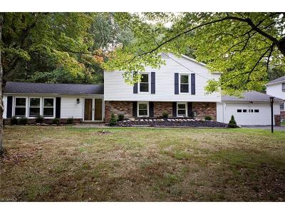 Chagrin Falls Single Family Home For Sale: 473 Somerset Dr