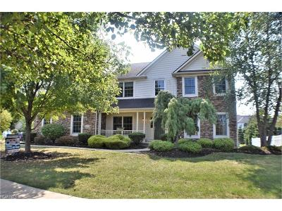 Strongsville Single Family Home For Sale: 22153 Northwood Trl