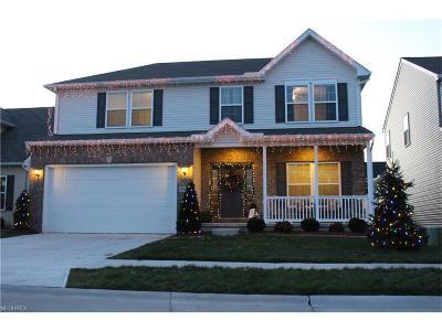 North Ridgeville Single Family Home For Sale: 9031 Morgan Cir