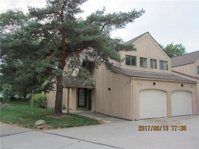 Avon Lake Condo/Townhouse For Sale: 84 Landings Way