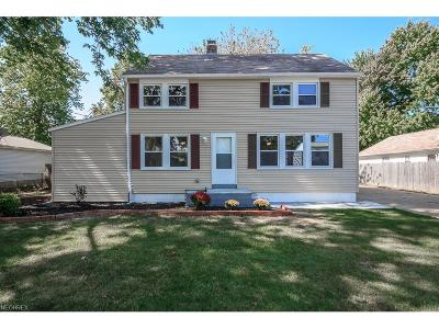 Painesville Township Single Family Home For Sale: 919 Pontiac Ave