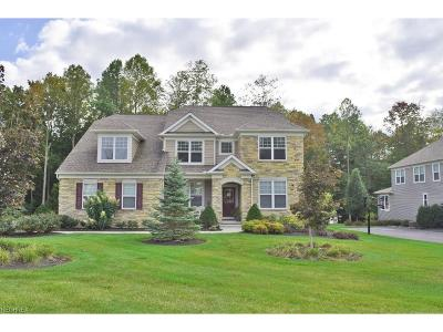 Geauga County Single Family Home For Sale: 7505 Mystic Ridge Rd
