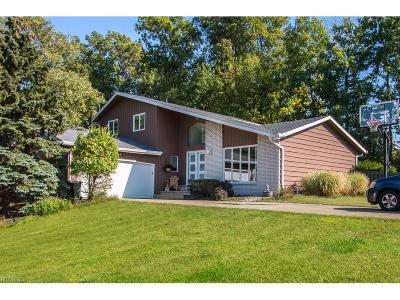 North Royalton Single Family Home For Sale: 4161 Bunker Ct