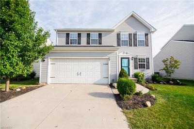North Ridgeville Single Family Home For Sale: 37342 Tail Feather Dr