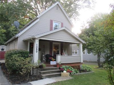 Elyria Single Family Home For Sale: 1389 East Ave