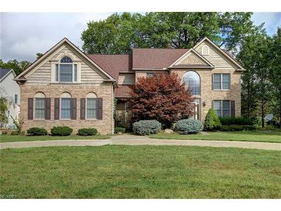 Avon Single Family Home For Sale: 37588 Bridge Pointe Trl