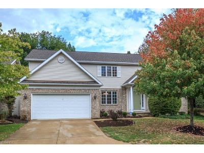 Bratenahl Single Family Home For Sale: 15 Wenden Ct