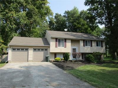 Painesville Township Single Family Home For Sale: 1589 Greenwich Ct
