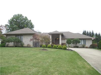 Canfield Single Family Home For Sale: 370 Shadydale Dr