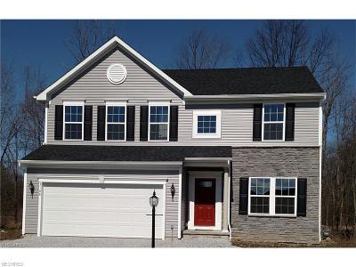 North Ridgeville Single Family Home For Sale: 30 Barkhurst Mill Dr