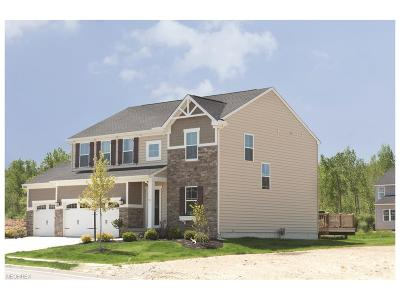 North Ridgeville Single Family Home For Sale: 10 Stockport Mill Dr