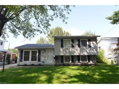 Elyria Single Family Home For Sale: 904 Salem