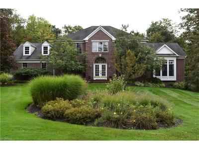 Geauga County Single Family Home For Sale: 11415 Glenmora Dr